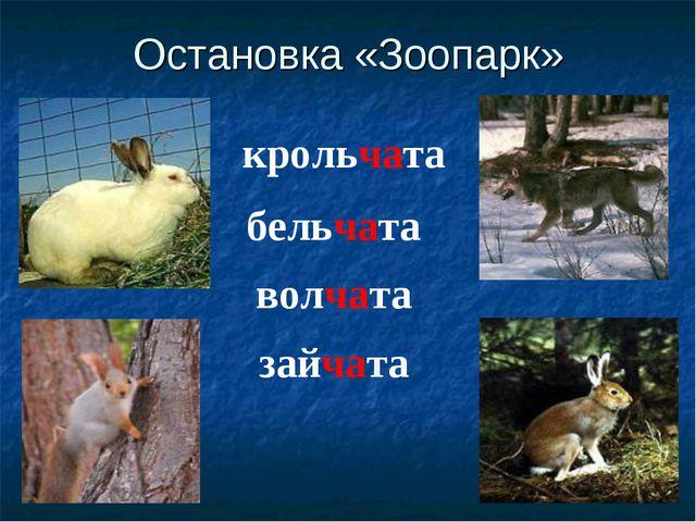 Остановка «Зоопарк» крольчата бельчата волчата зайчата