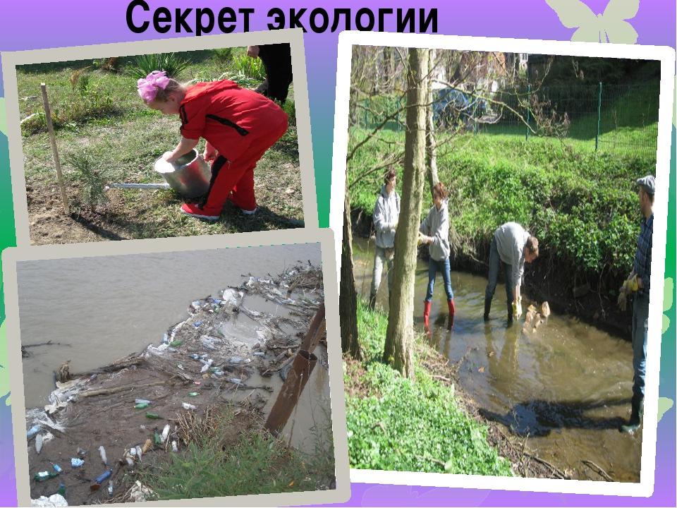 Секрет экологии