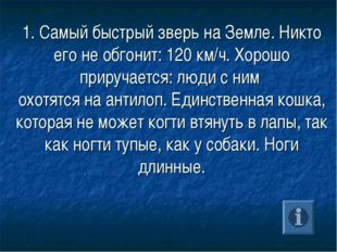 1. Самый быстрый зверь на Земле. Никто его не обгонит: 120 км/ч. Хорошо приру