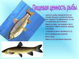 Ценность рыбы определяется в ее составе большого количества белка, они содерж