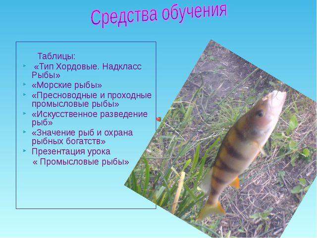Таблицы: «Тип Хордовые. Надкласс Рыбы» «Морские рыбы» «Пресноводные и проход...
