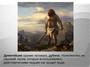 Древнейшее оружие человека, дубина, образовалась из обычной палки, которые ис