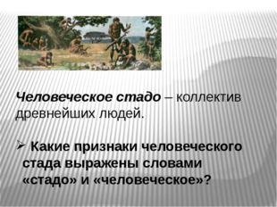 Человеческое стадо – коллектив древнейших людей. Какие признаки человеческого