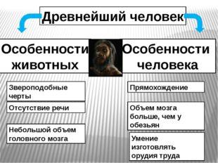 Древнейший человек Особенности животных Особенности человека Звероподобные че