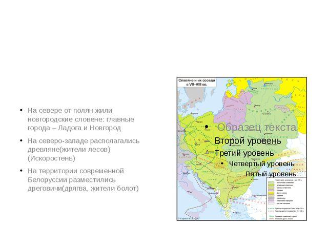 На севере от полян жили новгородские словене: главные города – Ладога и Новг...