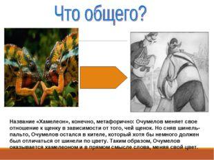 Название «Хамелеон», конечно, метафорично: Очумелов меняет свое отношение к щ