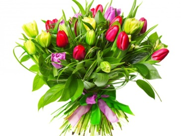 http://www.zastavki.com/pictures/640x480/2014/Holidays___International_Womens_Day_Multicolored_tulips_for_girl_on_March_8_057096_29.jpg