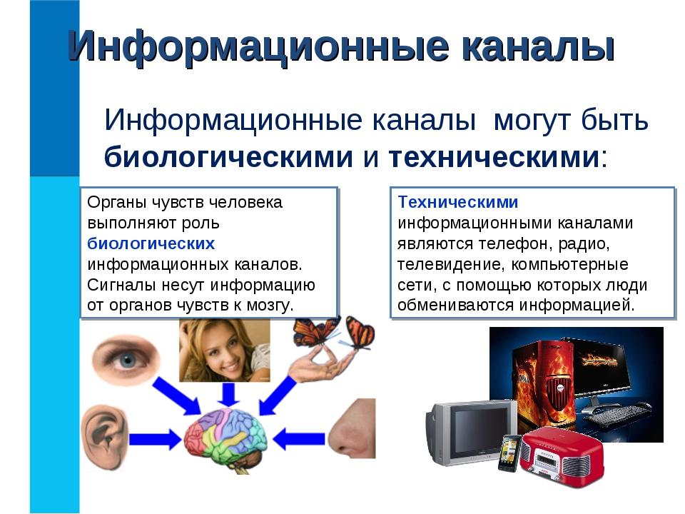 Информационные каналы Информационные каналы могут быть биологическими и техни...