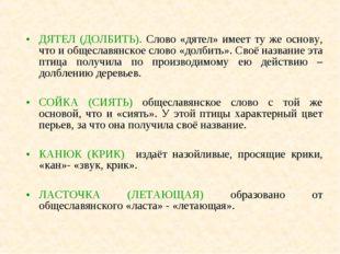 ДЯТЕЛ (ДОЛБИТЬ). Слово «дятел» имеет ту же основу, что и общеславянское слово