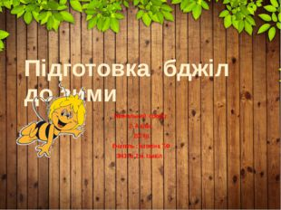 Підготовка бджіл до зими Навчальний проект 2- А клас 2014р. Вчитель : Істомін