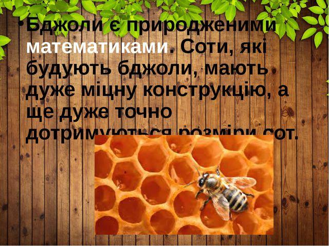 Бджоли є природженими математиками. Соти, які будують бджоли, мають дуже міцн...
