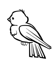 C:\Users\Оксана\Downloads\bird-3-coloring-page.jpg