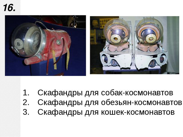 Скафандры для собак-космонавтов Скафандры для обезьян-космонавтов Скафандры д...