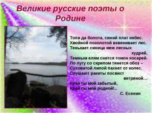Великие русские поэты о Родине Топи да болота, синий плат небес. Хвойной позо
