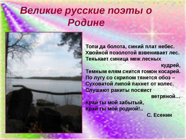 Великие русские поэты о Родине Топи да болота, синий плат небес. Хвойной позо...