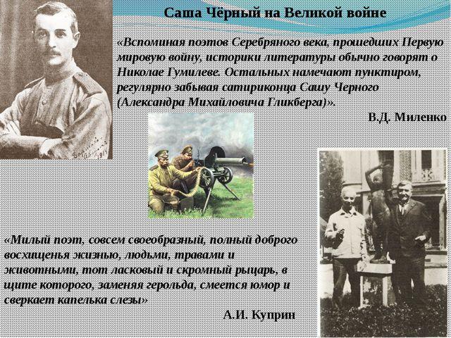 «Вспоминая поэтов Серебряного века, прошедших Первую мировую войну, историки...