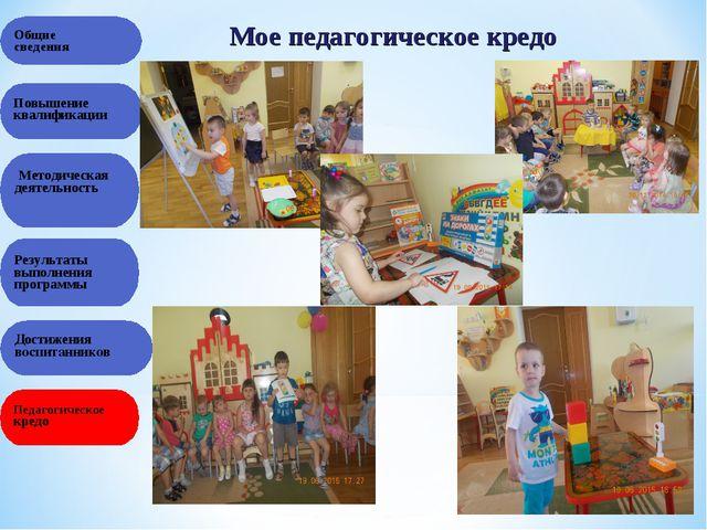 Общие сведения Результаты выполнения программы Повышение квалификации Методич...