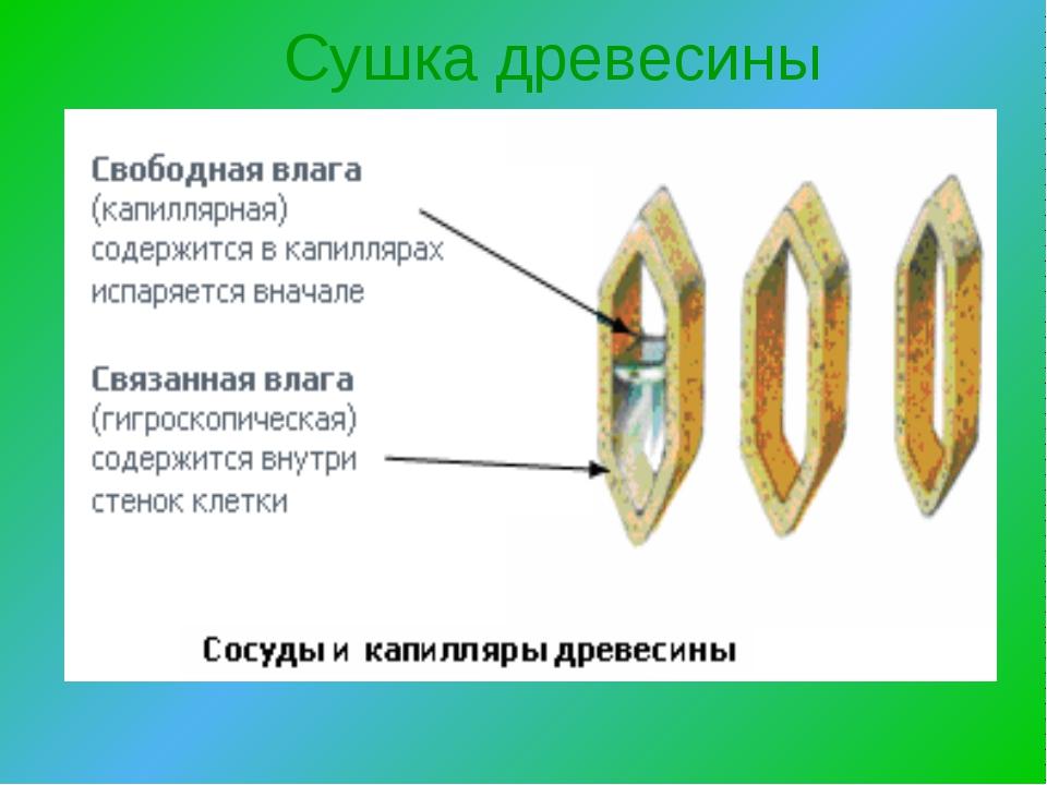 При сушке химически связанная влага из изделий
