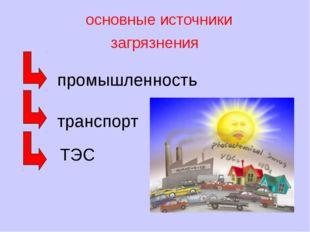 основные источники загрязнения промышленность транспорт ТЭС