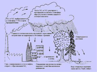 Кислотные осадки возникают главным образом из-за выбросов оксидов серы и азот