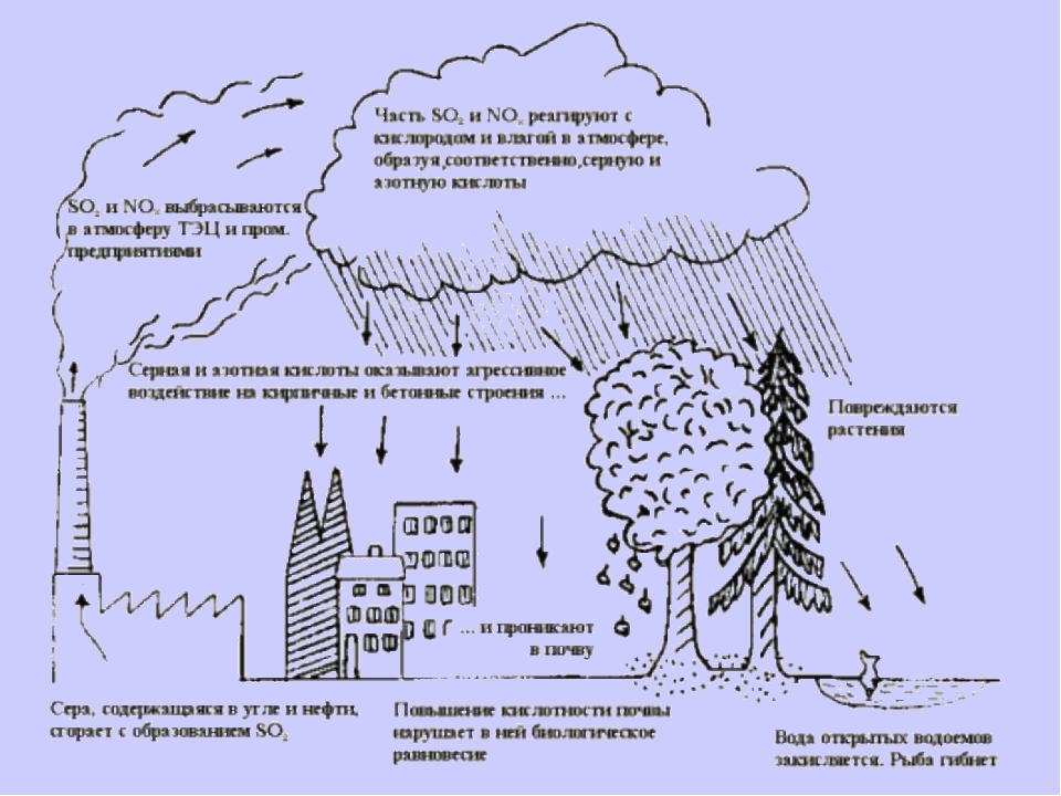 Кислотные осадки возникают главным образом из-за выбросов оксидов серы и азот...