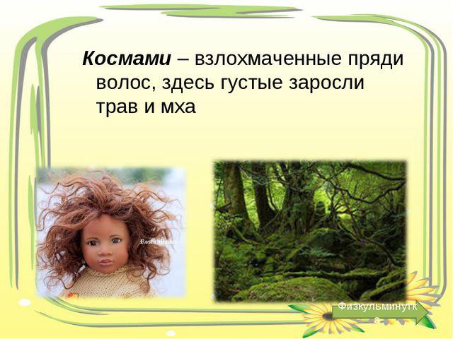 Космами – взлохмаченные пряди волос, здесь густые заросли трав и мха Физкульм...