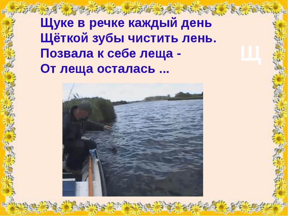 Щукев речке каждый день Щёткойзубы чистить лень. Позвала к себе леща - От...