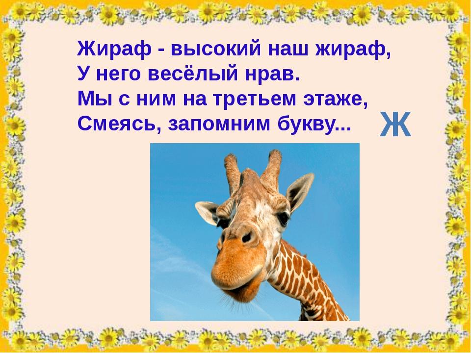 Жираф- высокий наш жираф, У него весёлый нрав. Мы с ним на третьем этаже, См...