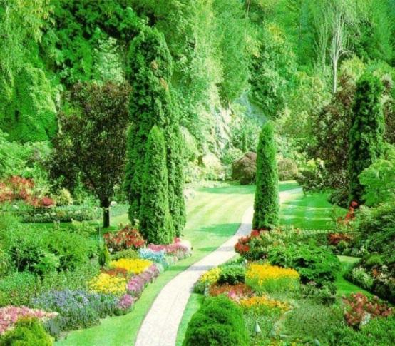 Описание: предлагаем услуги профессиональных озеленителей - Санкт-Петербург