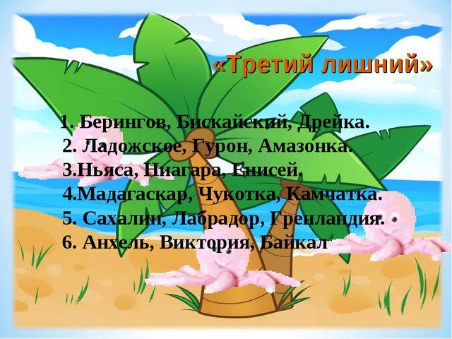 «Третий лишний» 1. Берингов, Бискайский, Дрейка. 2. Ладожское, Гурон, Амазонк...