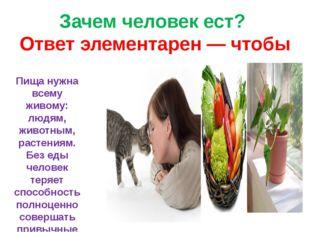 Зачем человек ест? Ответ элементарен — чтобы жить. Пища нужна всему живому: л