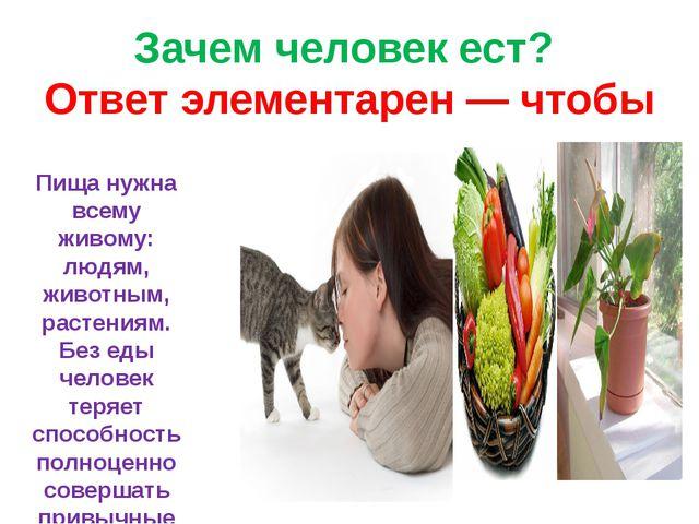 Зачем человек ест? Ответ элементарен — чтобы жить. Пища нужна всему живому: л...