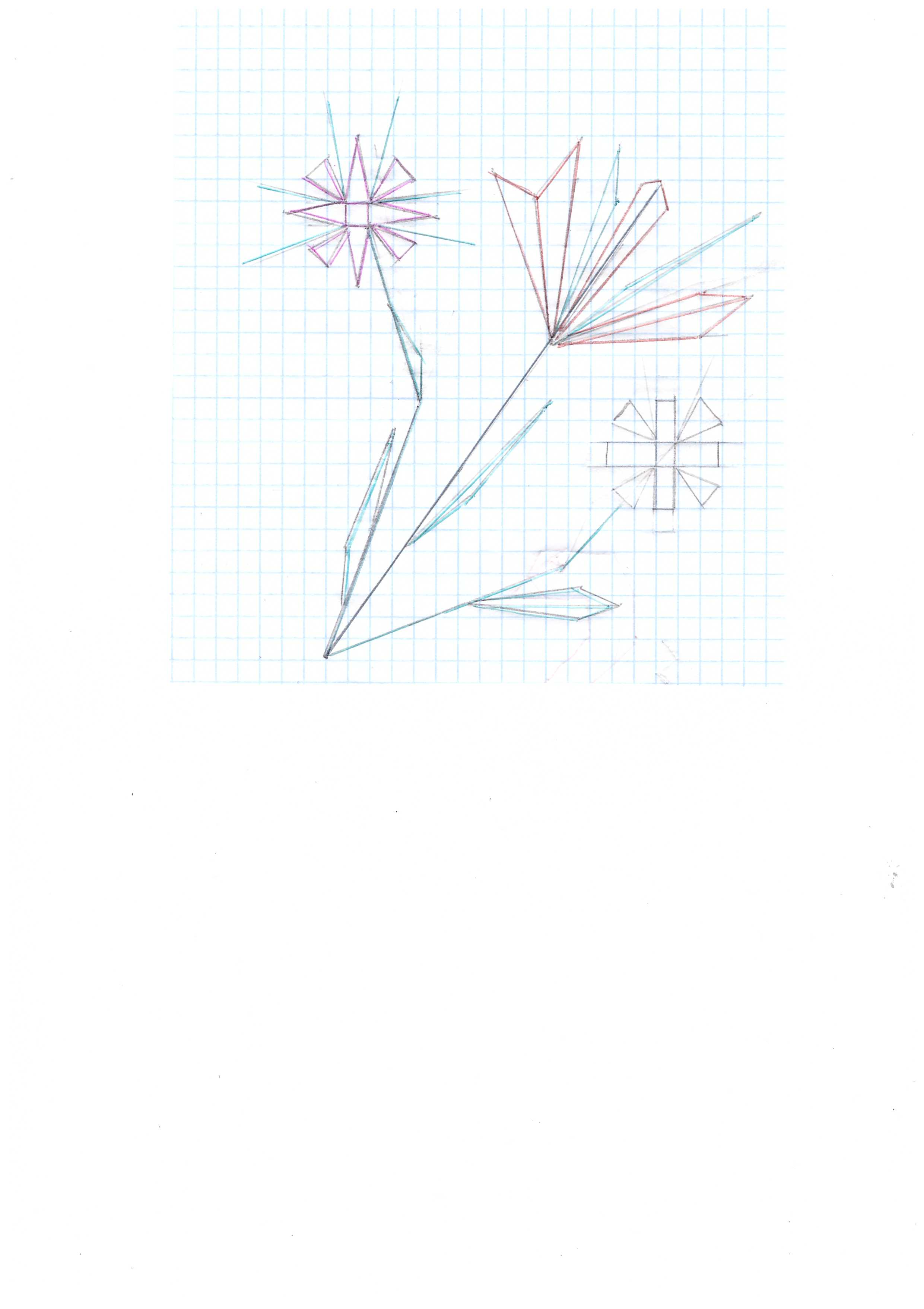 C:\Documents and Settings\User\Рабочий стол\В.М.Назаренко\цветок геом..jpeg