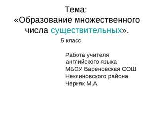 Тема: «Образование множественного числа существительных». 5 класс  Работ