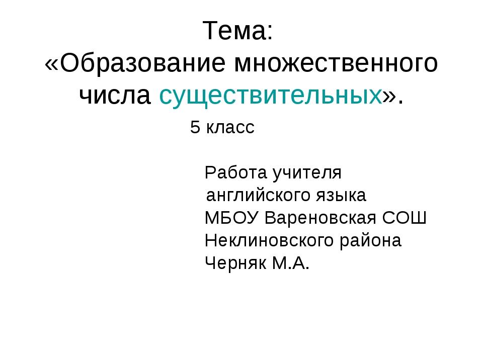 Тема: «Образование множественного числа существительных». 5 класс  Работ...