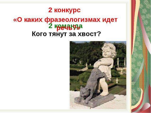 2 команда Кого тянут за хвост? 2 конкурс «О каких фразеологизмах идет речь?»