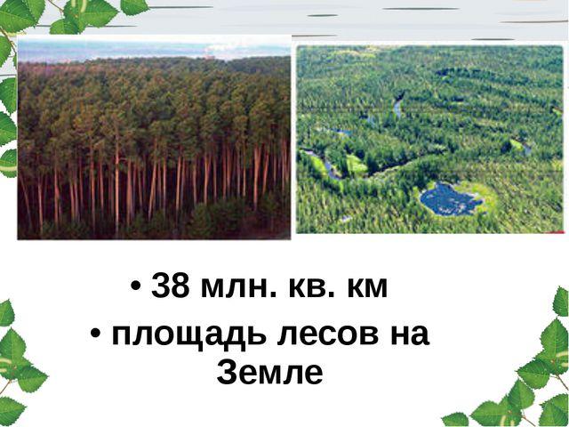 38 млн. кв. км площадь лесов на Земле