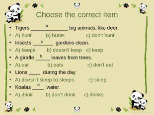 Choose the correct item Tigers _____________ big animals, like deer. A) hunt