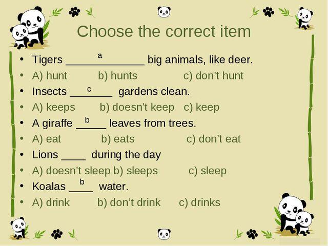 Choose the correct item Tigers _____________ big animals, like deer. A) hunt...