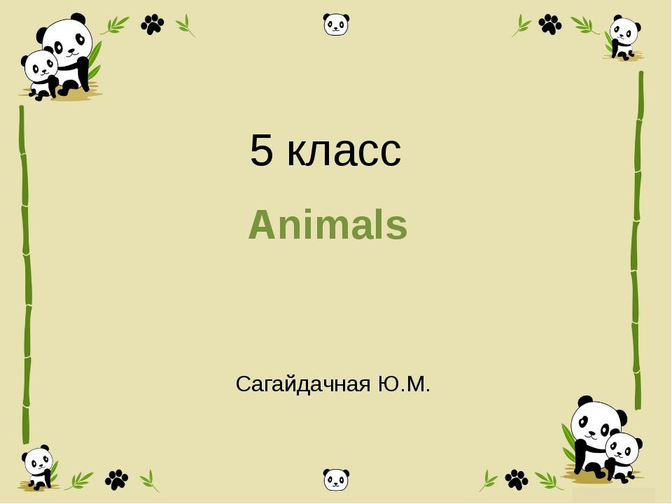 5 класс Animals Сагайдачная Ю.М.