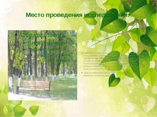Место проведения исследования: Парк расположен в юго-западной части г. Дмитри