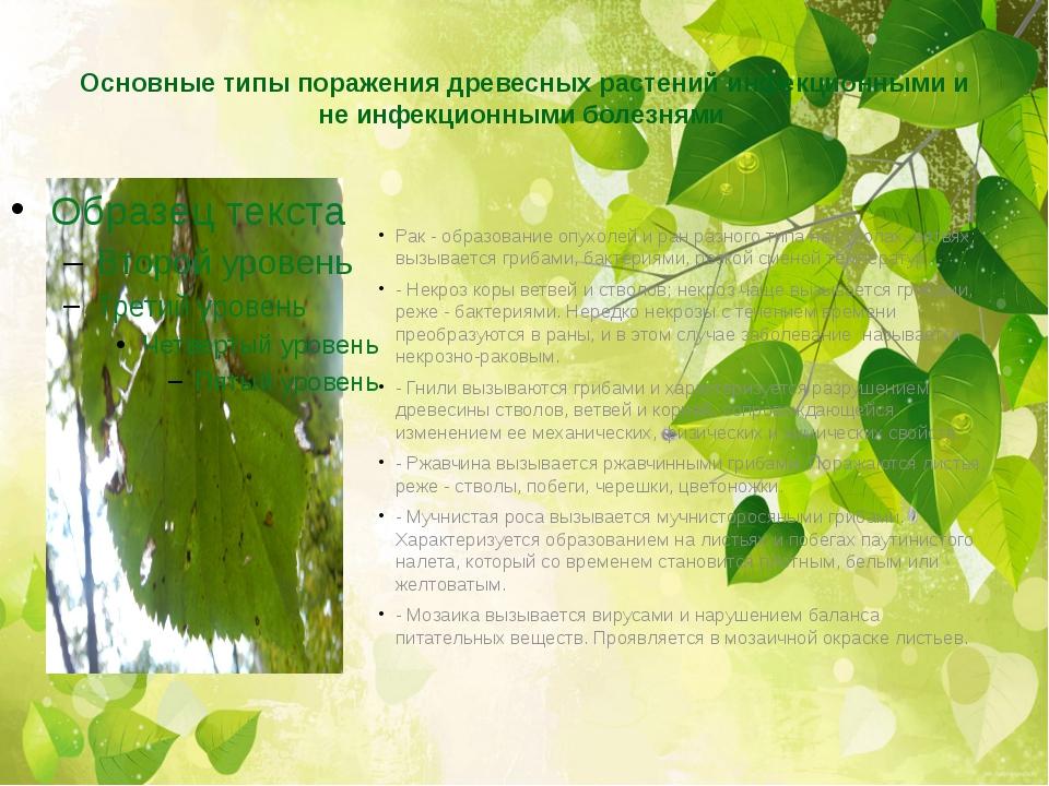 Основные типы поражения древесных растений инфекционными и не инфекционными б...