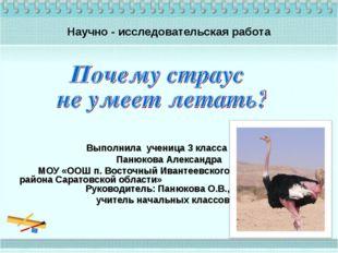 Выполнила ученица 3 класса Панюкова Александра МОУ «ООШ п. Восточный Ивантеев