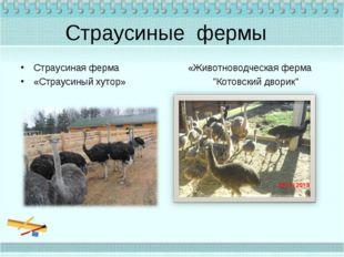 Страусиные фермы Страусиная ферма «Животноводческая ферма «Страусиный хутор»