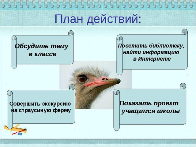 План действий: Обсудить тему в классе Совершить экскурсию на страусиную ферму...