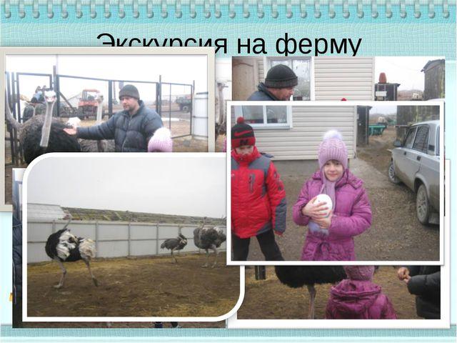 Экскурсия на ферму