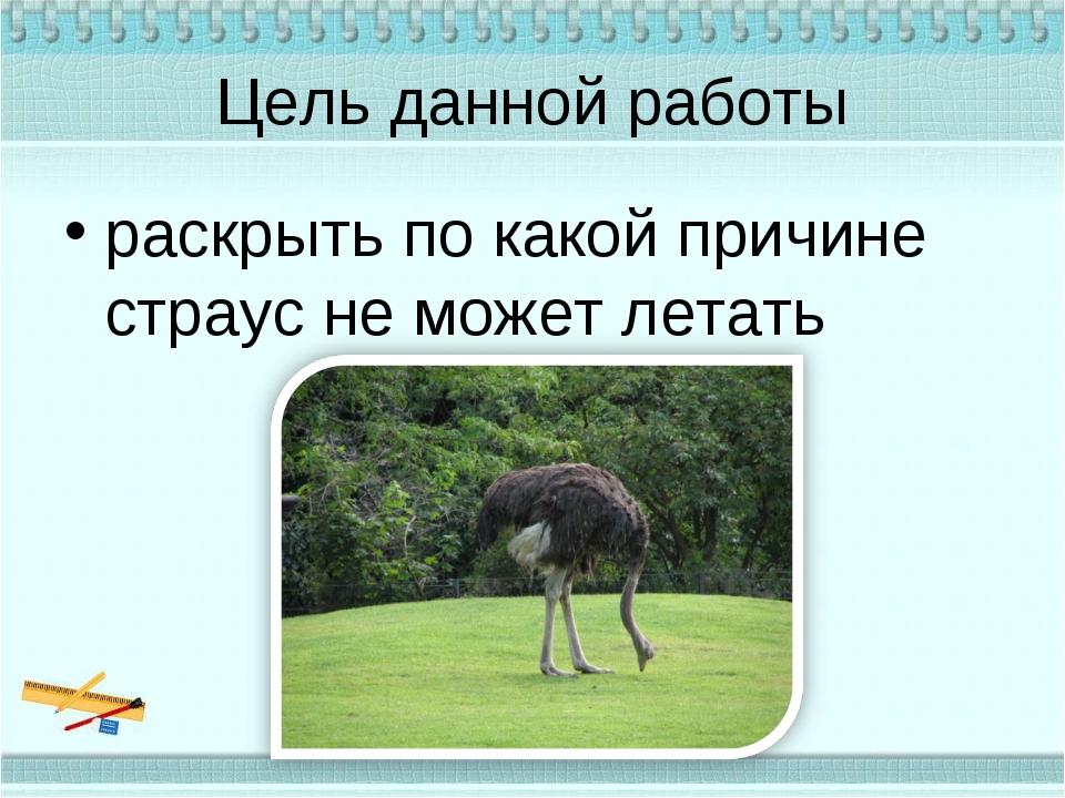 Цель данной работы раскрыть по какой причине страус не может летать