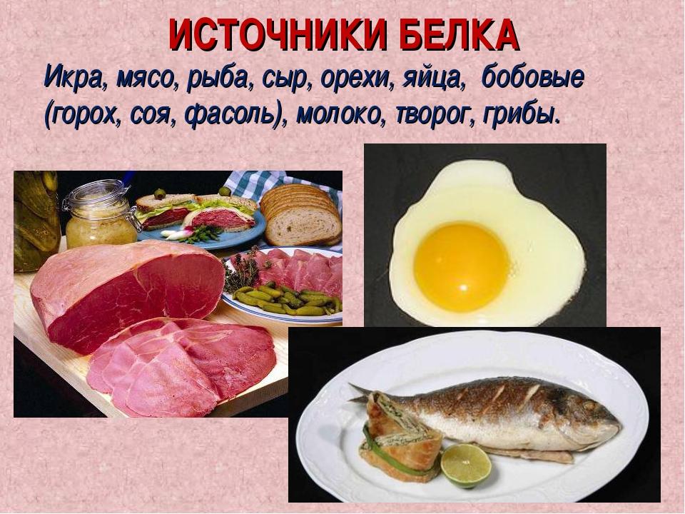ИСТОЧНИКИ БЕЛКА Икра, мясо, рыба, сыр, орехи, яйца, бобовые (горох, соя, фасо...