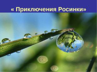 « Приключения Росинки»