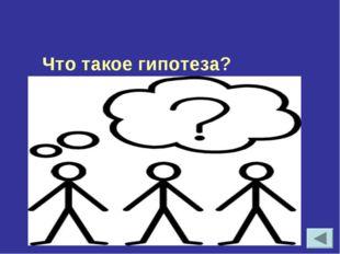 Что такое гипотеза?